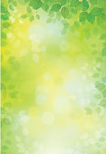 Vector green leaves background.