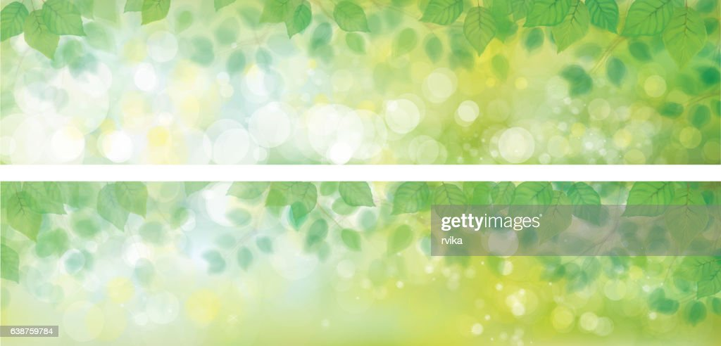 Vector green leaves backgrounds.