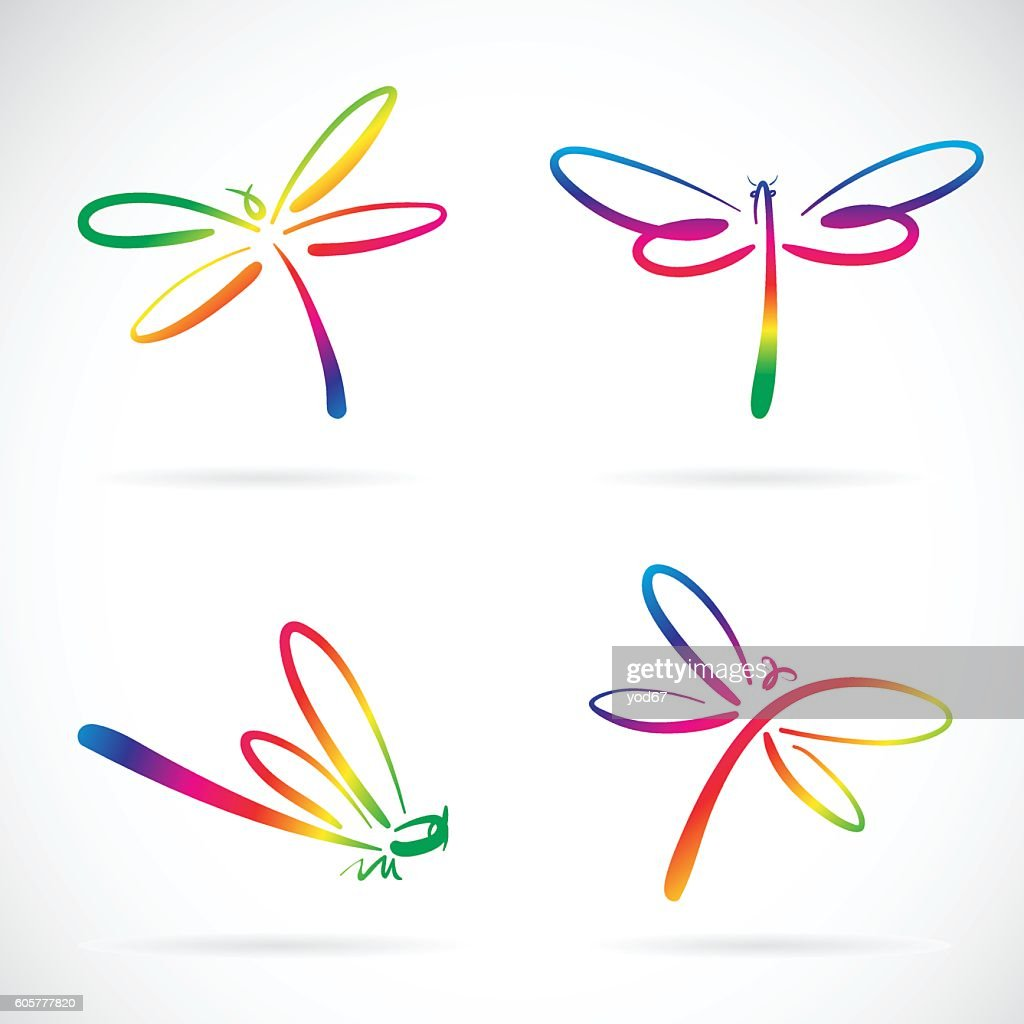 Vector group of dragonfly sketch on white background