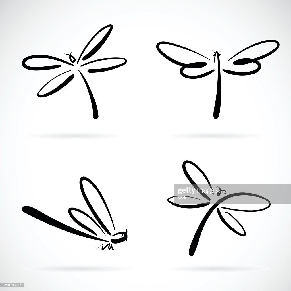 Vector group of dragonfly sketch.
