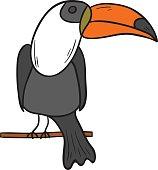 Vector hand draw cartoon toucan