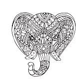 Vector hand draw of Elephant head