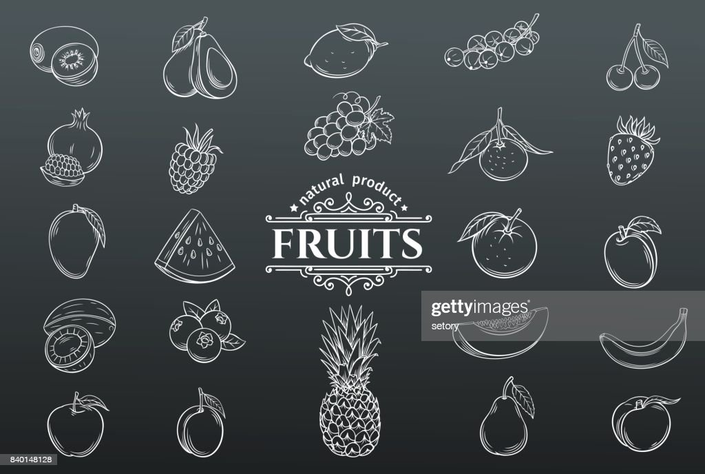 Vector hand drawn fruits icons set.