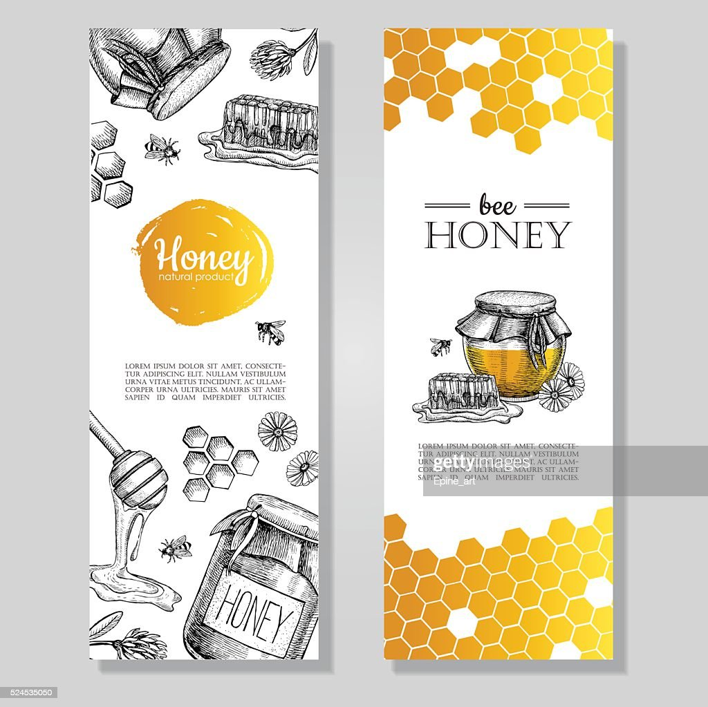 Vector hand drawn honey banners. Detailed honey engraved  illust