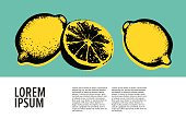Vector hand drawn lemon.