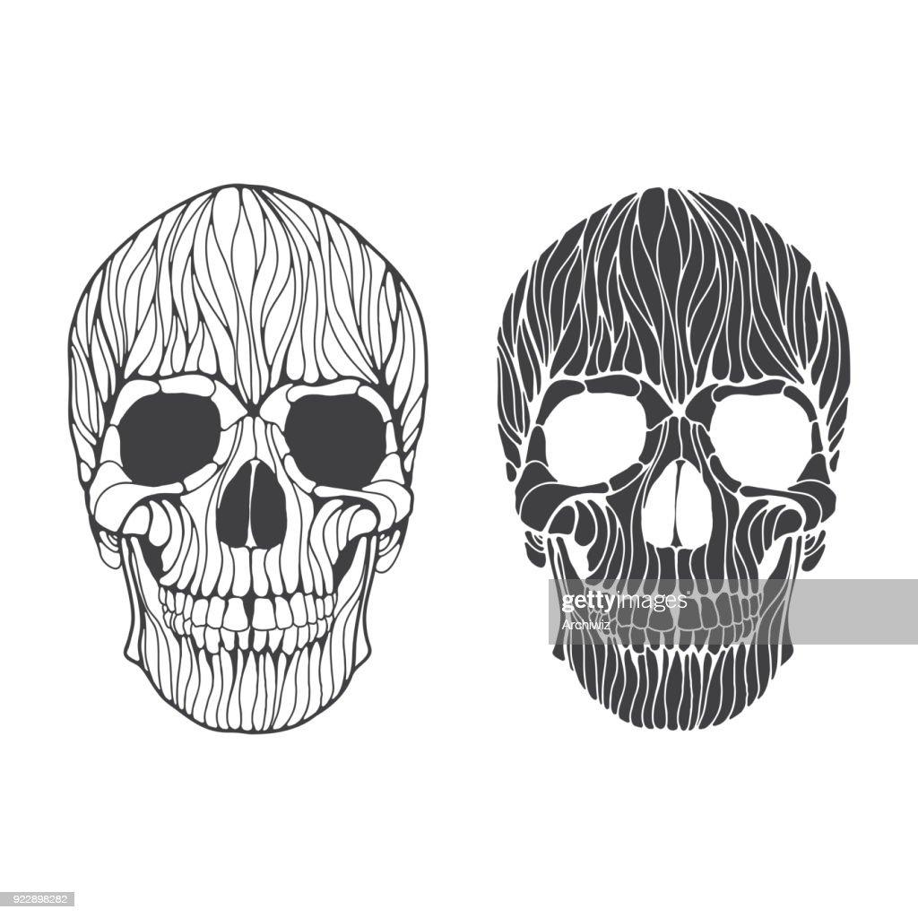 Vector hand drawn skull illustration.