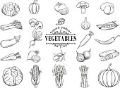 Vector hand drawn vegetables icons set. Decorative
