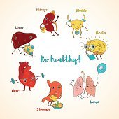 Vector healthy human organs
