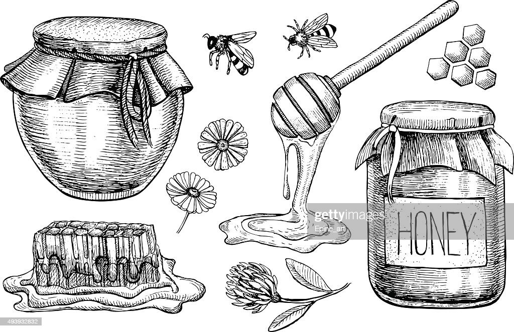 Vector honey set. Vintage hand drawn illustration