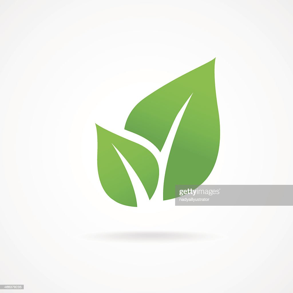 vector icon leaf