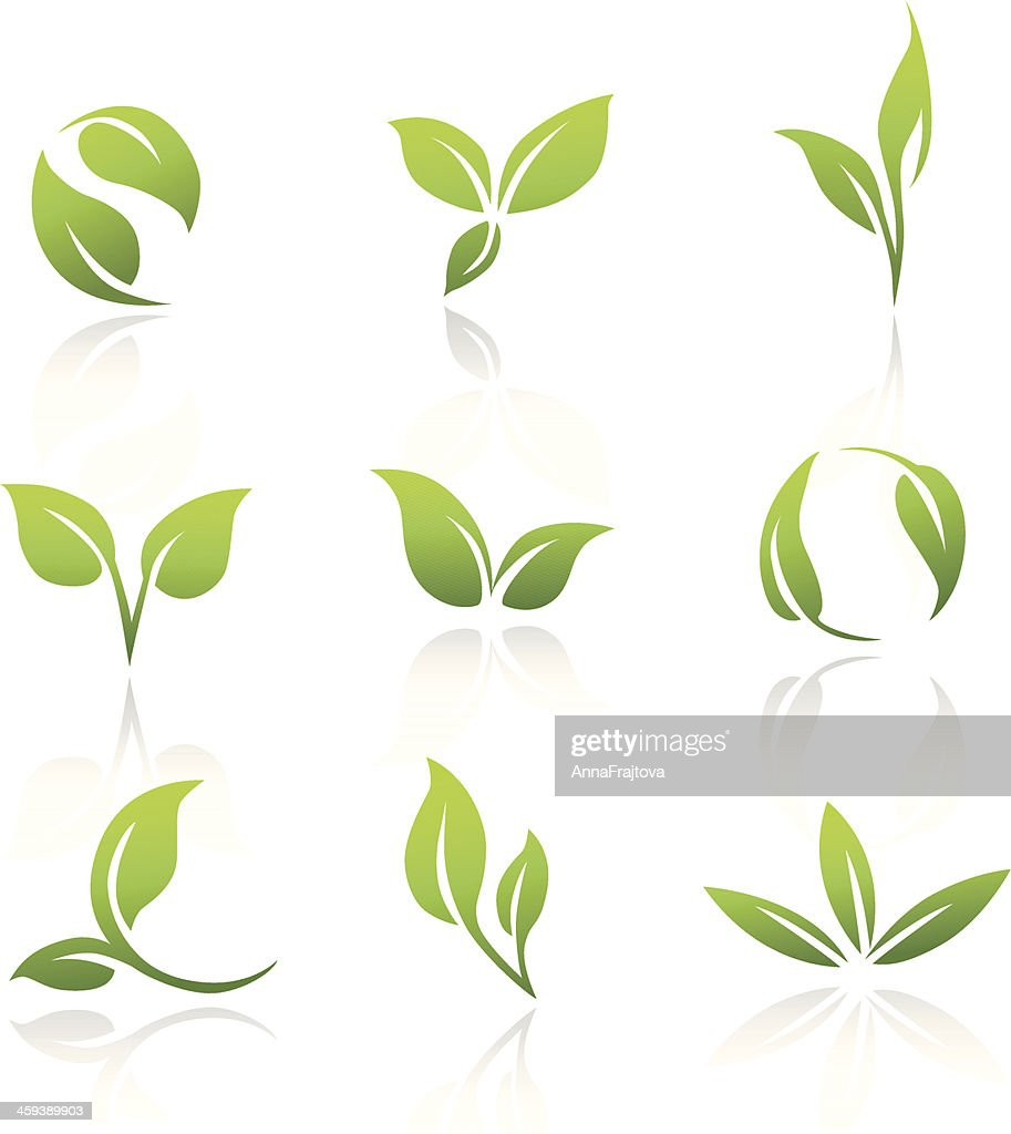 Vector Icons - Green Leaves