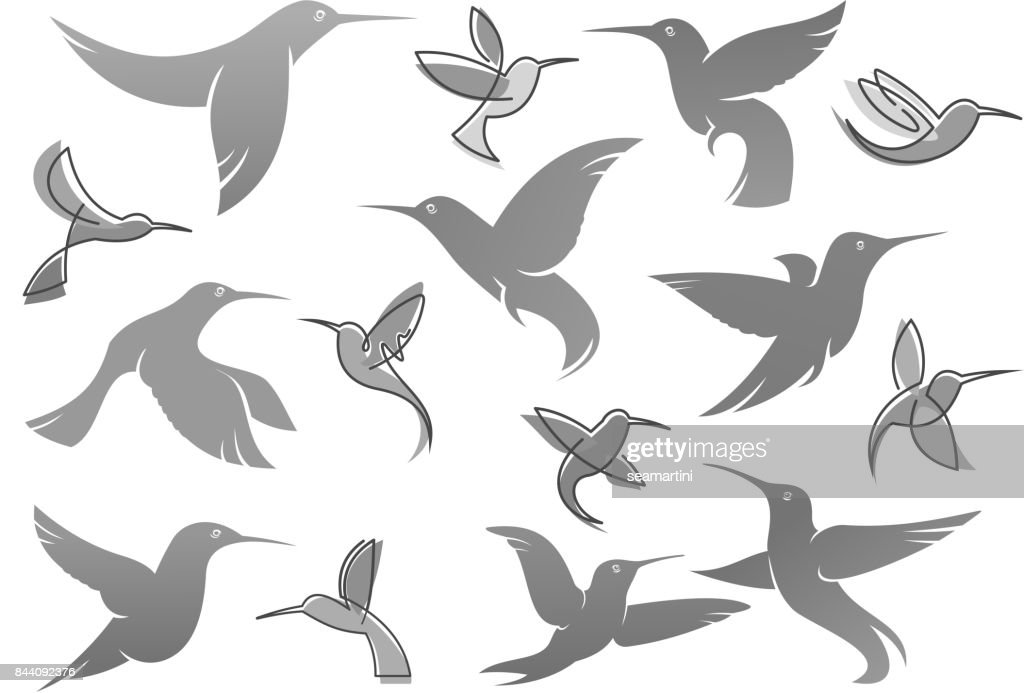 Vector icons of colibri humming bird