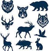 Vector icons of wild animals and birds for hunting