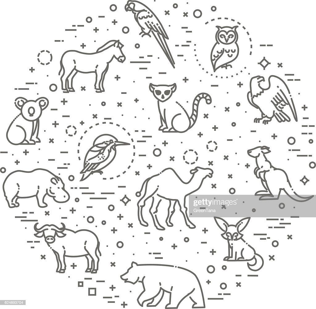 vector icons. Zoo. Animals
