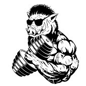 Vector illustration a strong ferocious boar bodybuilder shows a large bicep