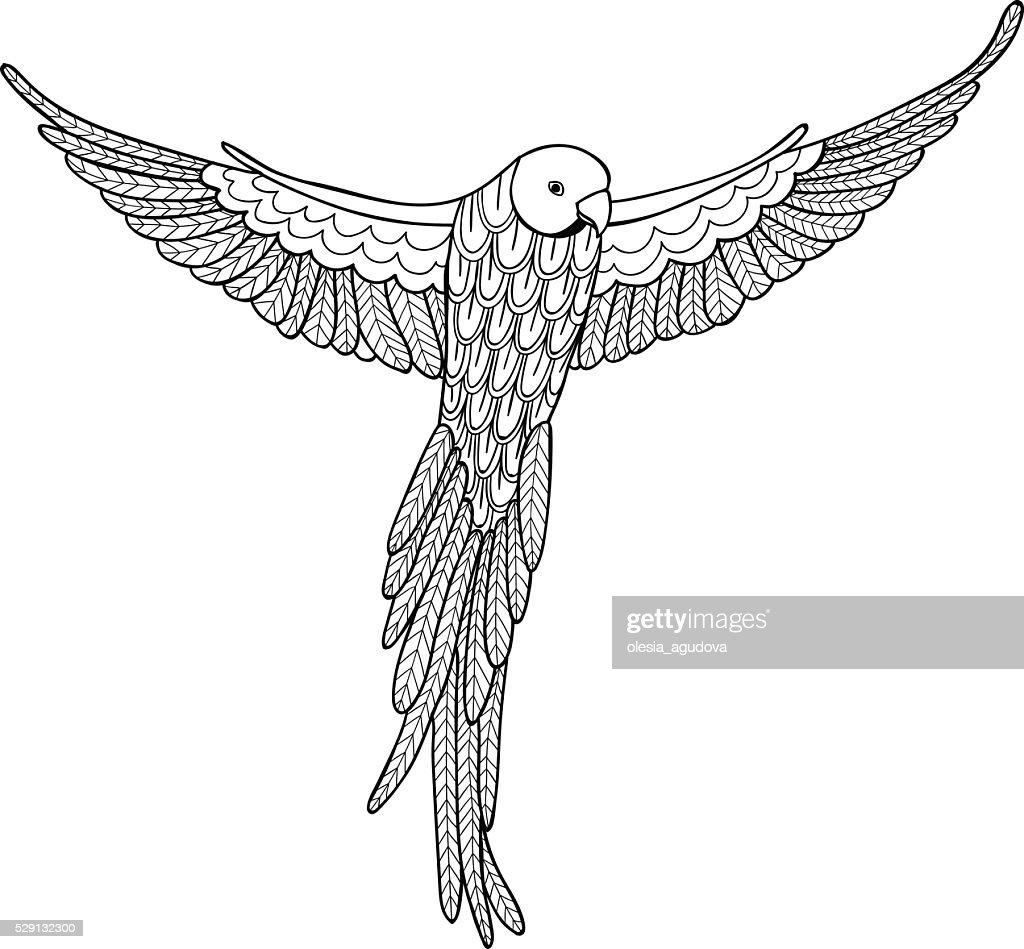 Vector illustration decorative bird on white background. Coloring book for