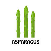 Vector Illustration Flat Asparagus isolated on white background , Raw materials fresh vegetable