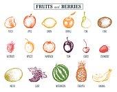Vector illustration fruits and berries. Hand drawn greengrocery set for organic drink cards, farm eco products tags: Peach, Lemon, Orange, Apple, Cherry,Kiwi, Grape, Melon, Apricot, Mandarin etc.