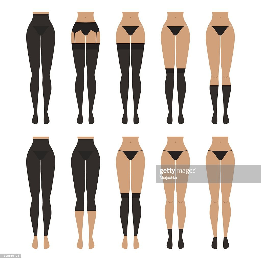 Vector illustration. Hosiery elements - tights, stockings, golfs, leg warmers