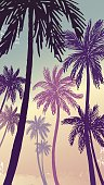 Vector illustration of a hand drawn palm trees on a paint background.