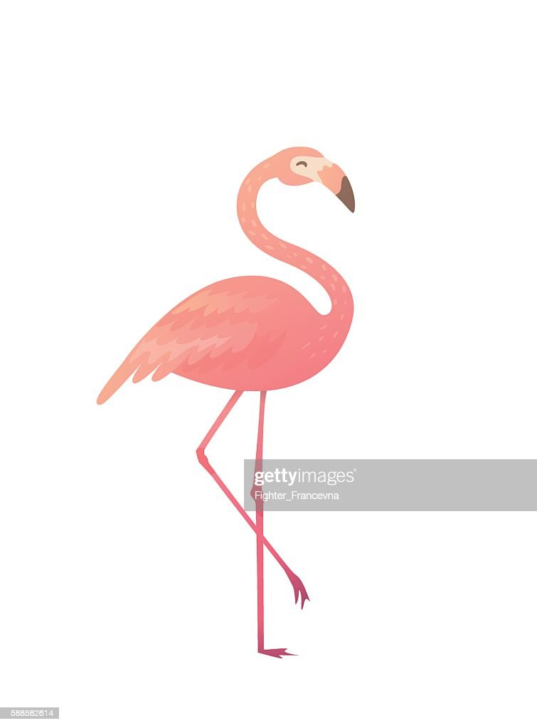 Vector illustration of a pink flamingo.