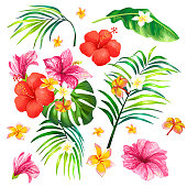 Vector illustration of a realistic style branch of a tropical palm tree with hibiscus flowers