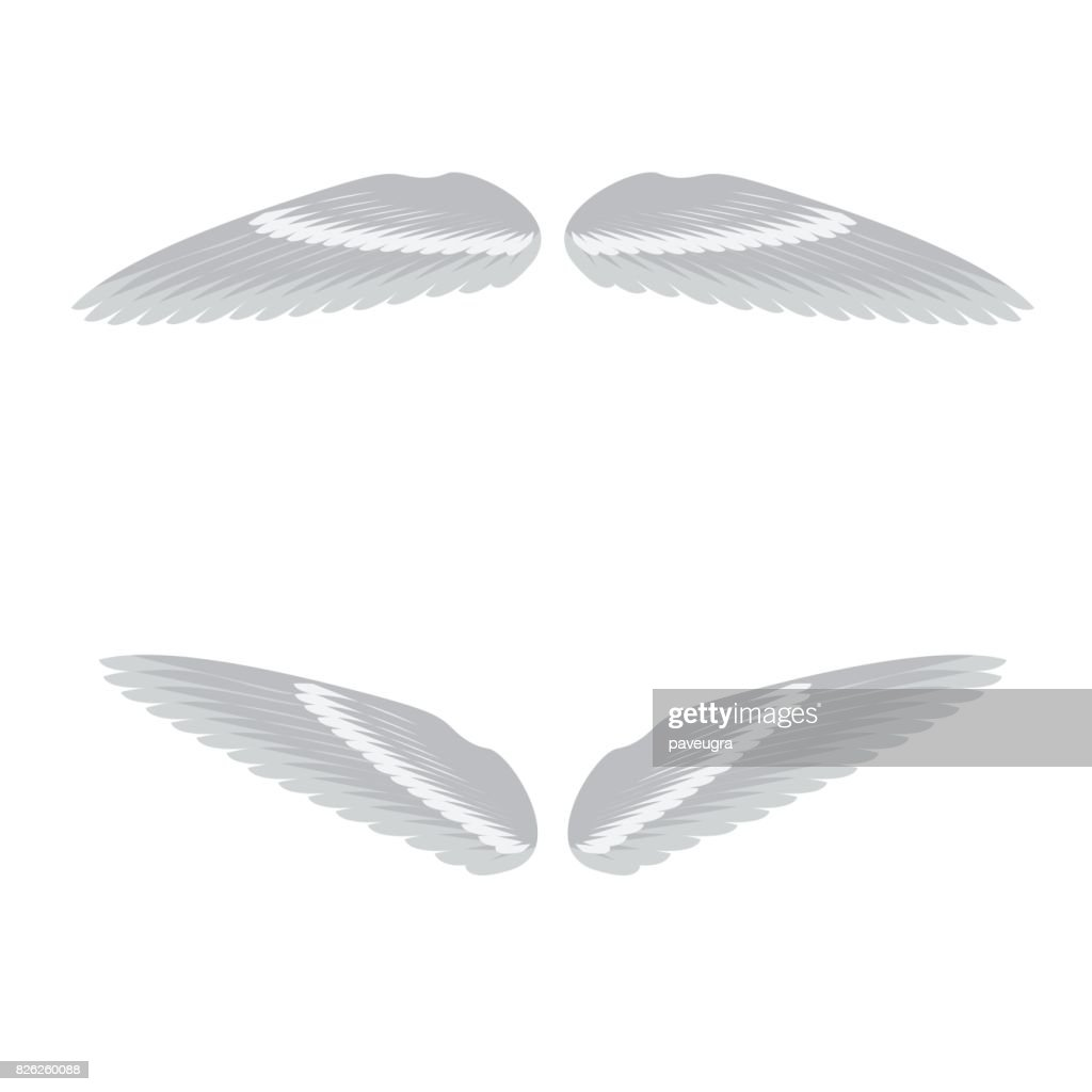 vector illustration of angels wings