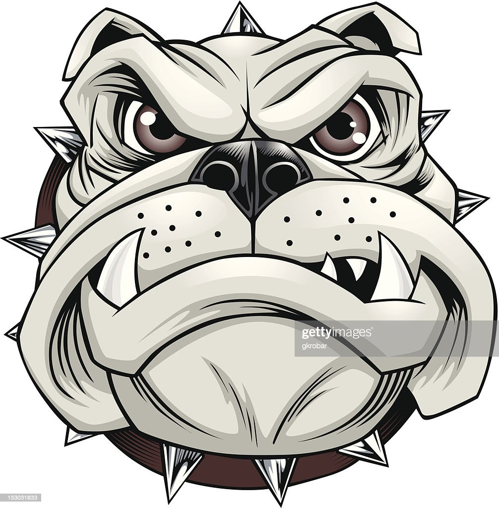 Vector illustration of bulldog with spiked collar