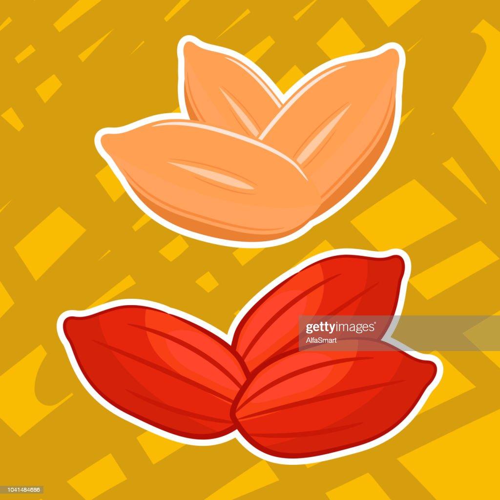 Vector illustration of cartoon peanuts