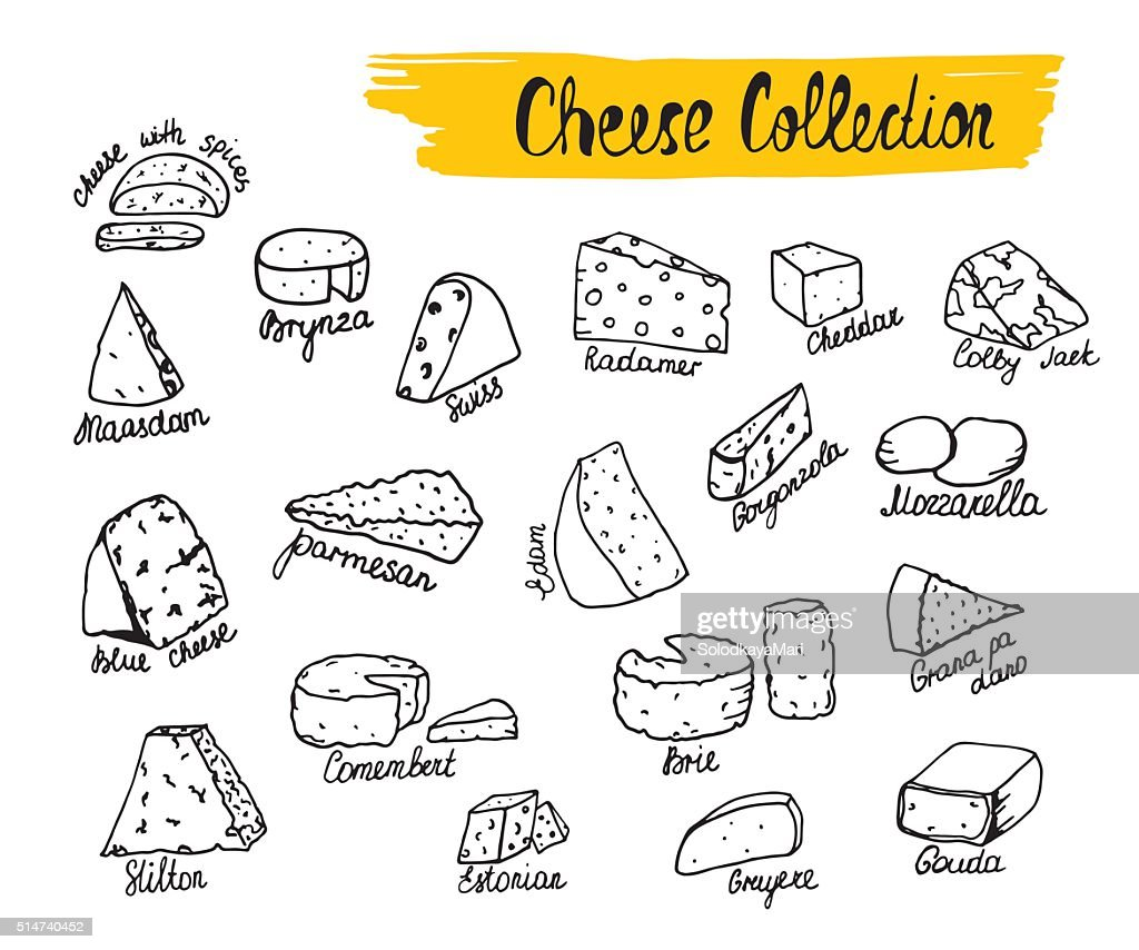 Vector illustration of cheese types in hand drawn style.