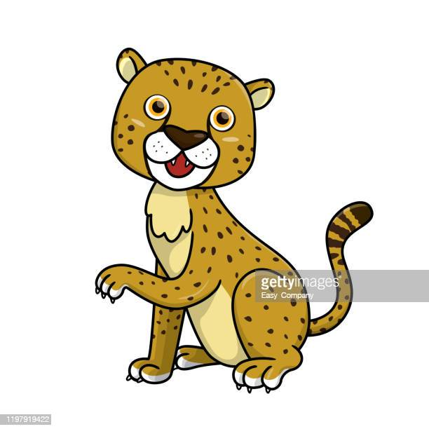 vector illustration of cheetah isolated on white background. - cartoon characters with big teeth stock illustrations