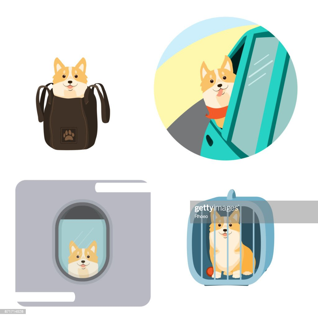 Vector illustration of dog in a bag, in pet cage, carriage of dogs on aircraft and car.