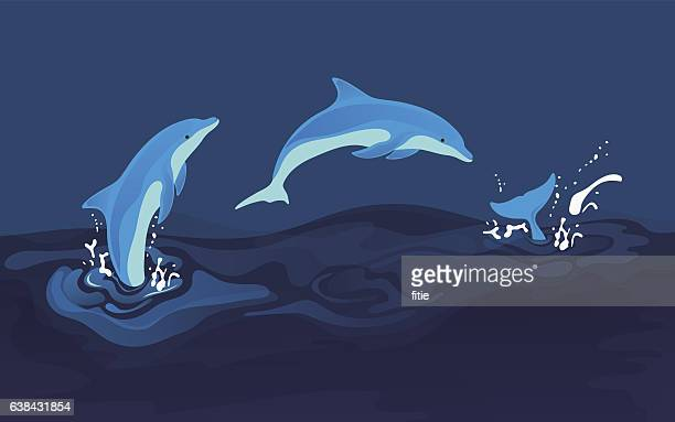 vector illustration of dolphins - jumping stock illustrations