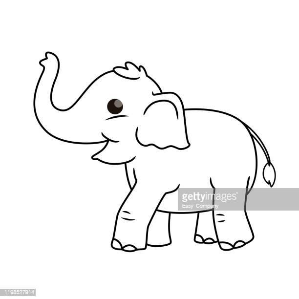 vector illustration of elephant isolated on white background. for kids coloring book. - cartoon characters with big teeth stock illustrations