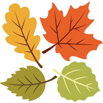Vector illustration of four autumn leaves - gettyimageskorea