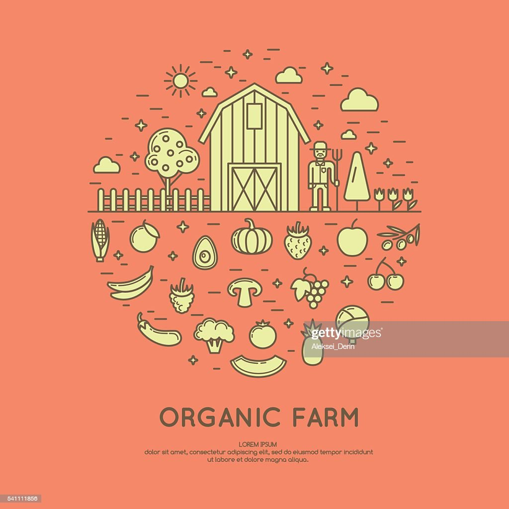 Vector illustration of organic farm.