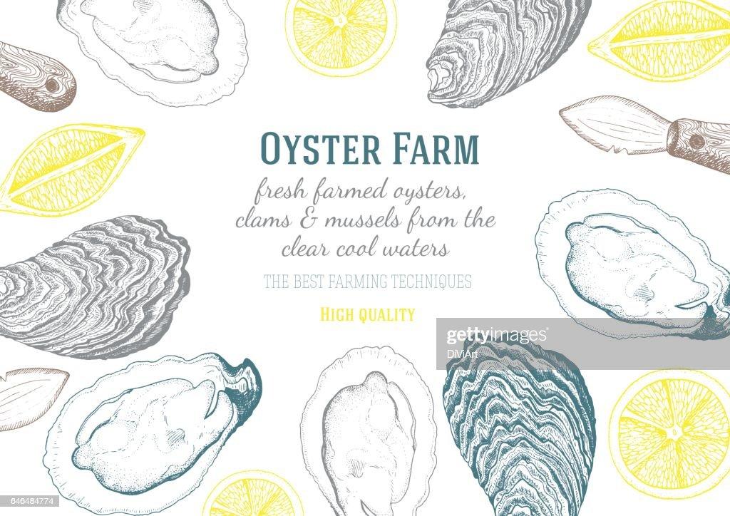 Vector illustration of oyster.
