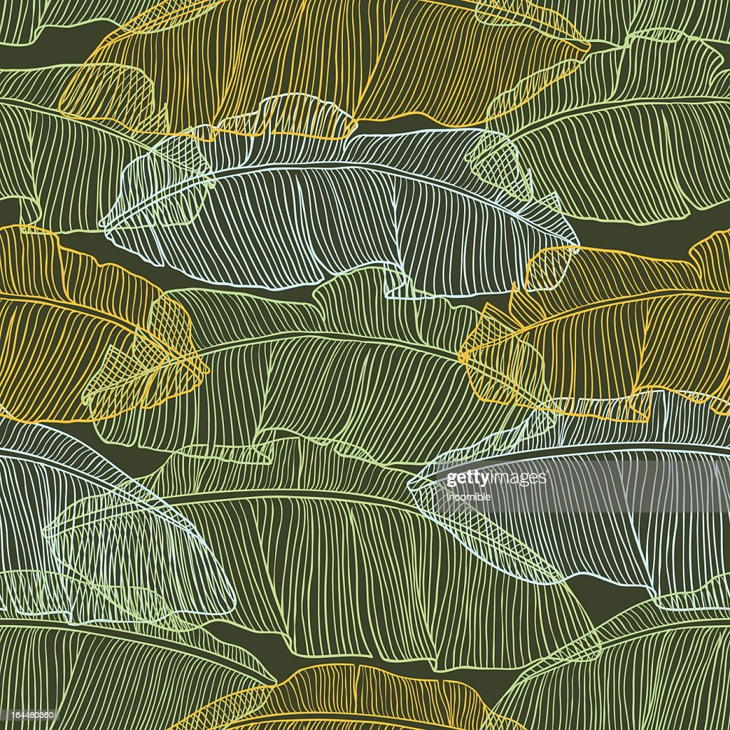 Vector illustration of palm tree leaves in different colors