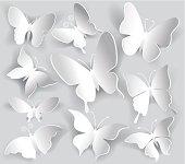 Vector illustration of paper butterflies