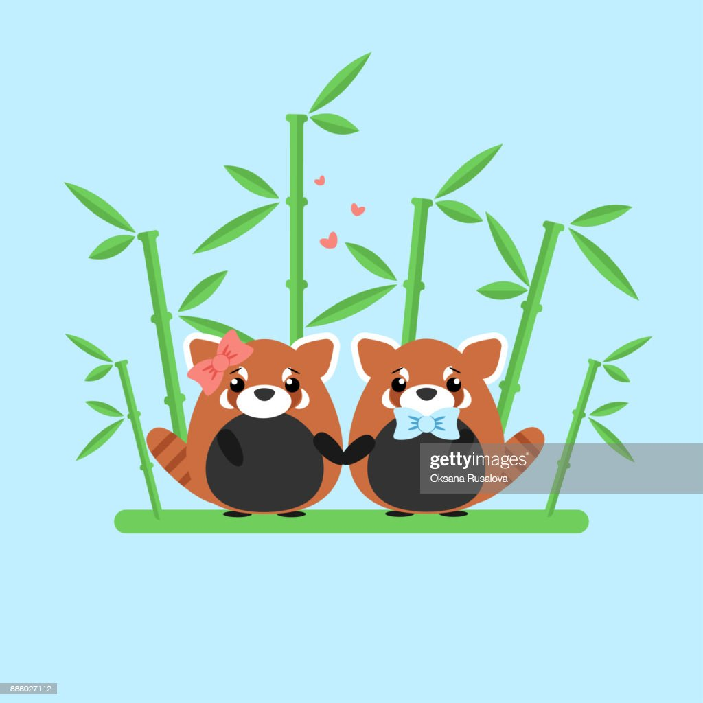 Vector Illustration Of Red Panda Couple In Love With Ornate Bamboo