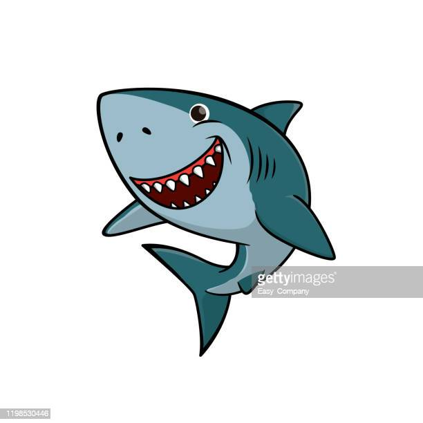 vector illustration of shark isolated on white background. - cartoon characters with big teeth stock illustrations