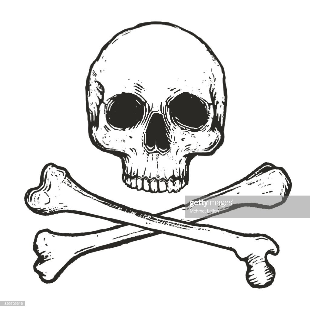 vector illustration of skull and crossbones