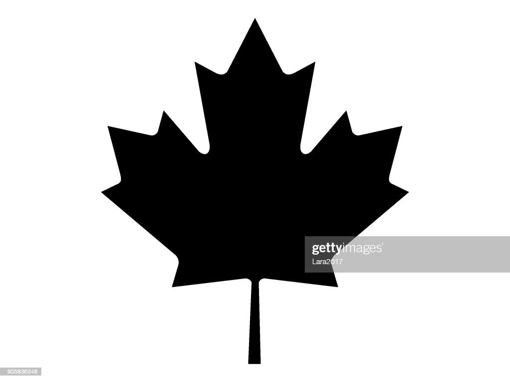 Vector illustration of the black and white Maple Leaf