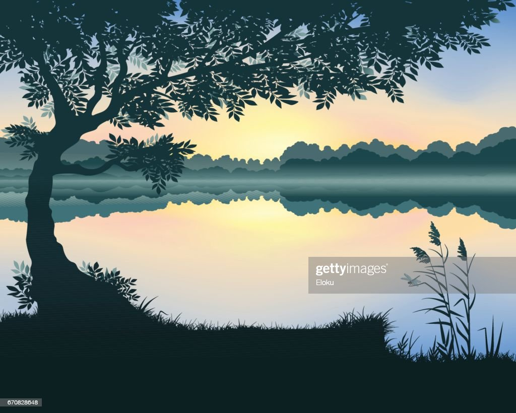 Vector illustration of the lake