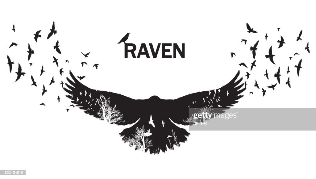 Vector illustration of the raven silhouette with the fluttering wings. Double exposure effect.