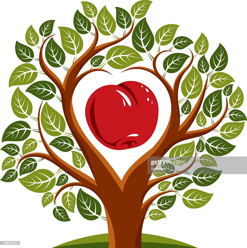 Vector illustration of tree with branches with an apple inside