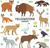 Vector illustration of Yellowstone National Park animals