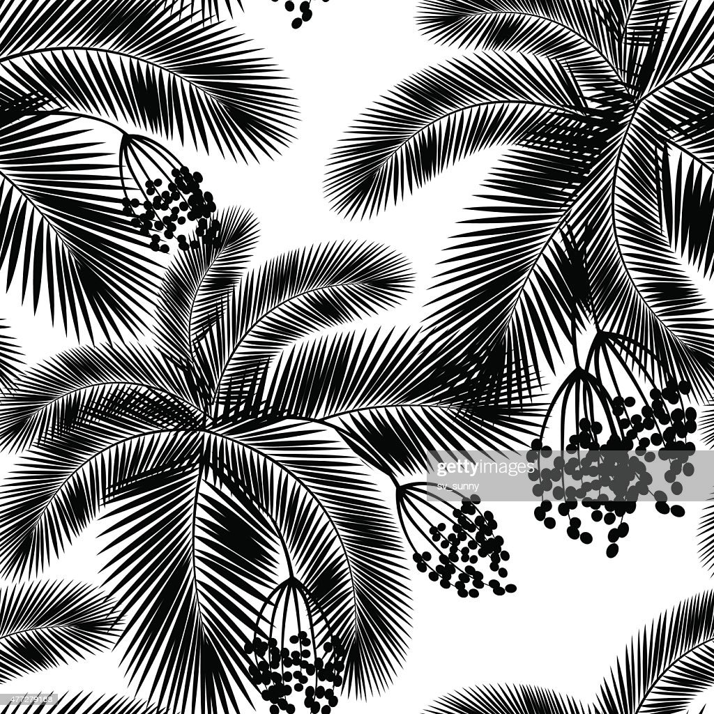 Vector illustration Seamless black and white palm leaves and fru