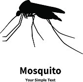 Vector illustration silhouette of insect mosquito