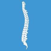 Vector illustration white spine diagnostic symbol